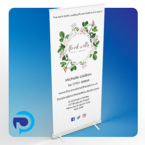 Pull up banner small